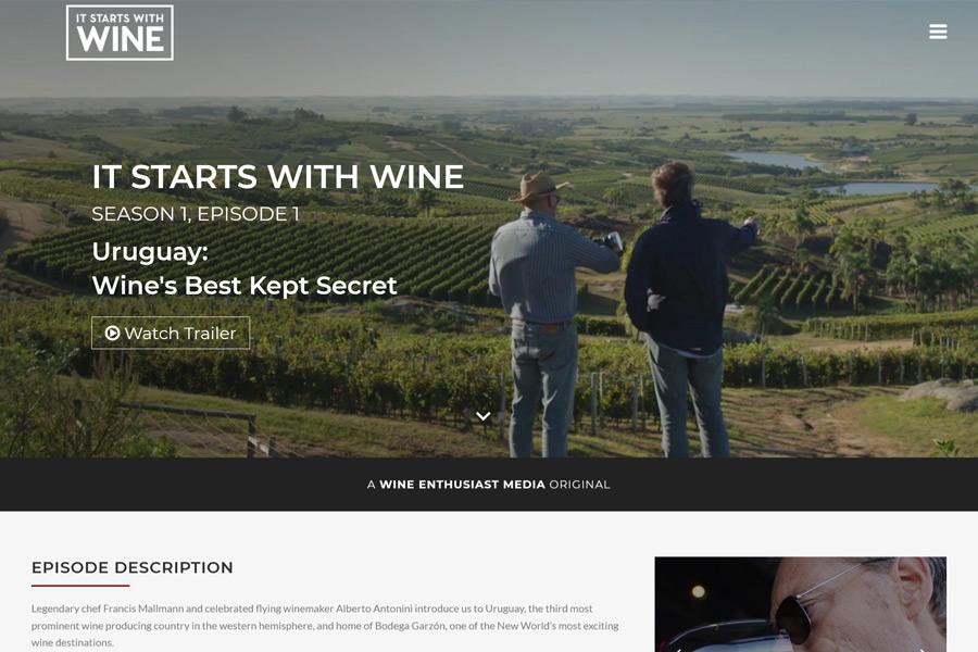 It Starts With Wine website